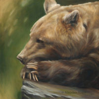 'Inner thoughts', Brown bear, 80x80 cm, oil painting $5,500 incl frame