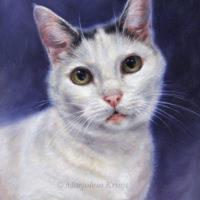 'Binkie'- cat portrait, 24x18, oil (sold/commission)