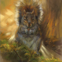 'Squirrel backlit', 22x29 cm, pastel painting (for sale)