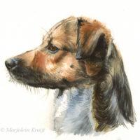 'Portrait profile', 20x17 cm, watercolor (for sale)