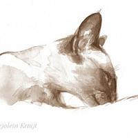 'Siamese', 28x18 cm, ink portrait $650 incl frame