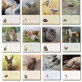 Birthday calender by Marjolein Kruijt -preview