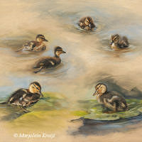 'Ducklings studies', 60x50 cm, oil painting $2,800 incl frame