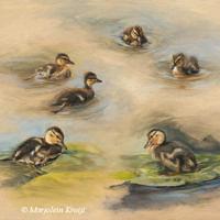 'Ducklings studies', 60x50 cm, oil painting (for sale)