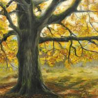 'Autmn tree', 30x30 cm, oil painting, (for sale)