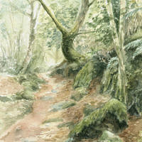 'Becky forest'-path, 15x23 cm, watercolor painting, (for sale)