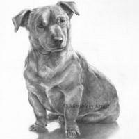 'Jack Russel'- dog portrait, 30x40 cm, pencil (sold/commission)