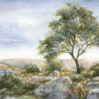 'Dartmoor tree', 13x11 cm, watercolor painting (nfs)