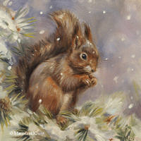 'Squirrel in the snow', 20x20 cm, oil painting (sold)