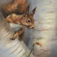 'Squirrel', 18x24 cm, oil painting (sold)