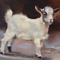 'Little goat', 18x24 cm, oil painting (for sale)