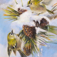 'Goldcrests', 15x20 cm, oil painting (sold)