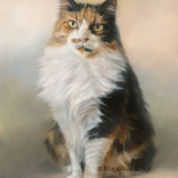 'Winnie'- cat portrait, 30x40 cm, oil painting (sold/commission)