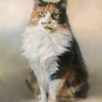 'Winnie'- cat portrait, 30x40 cm, oil painting (sold/commission)
