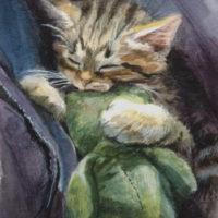 'Cuddle'-kitten, 11x15 cm, watercolor (NFS)