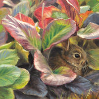 'Little rabbit', 18x24 cm, oil painting