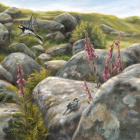'Sunlit foxgloves'-white wagtails, 80x80 cm, oil $6,000 incl frame