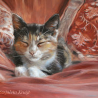 'Misu' - kitten, 18x13 cm, oil painting (sold)