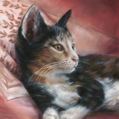 'Misu', 24x30 cm, oil painting - book COVER (sold)
