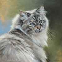 'Siberian cat'-cross eyed Luna, 30x30 cm, oil (sold/commission)