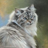 'Siberian cat'-cross eyed Luna, 30x30 cm, oil (sold/commission)