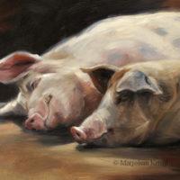 'Sleeping beauties'-pigs, 24x18 cm, oil painting (sold)