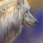 'White wolf'-study, 20x30 cm, pastel painting $850 incl frame