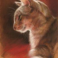 'Yoda sunlit' -siamese, 18x25 cm, pastel painting (NFS)