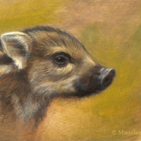'Piglet', 18x13 cm, oil painting (sold)