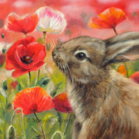 'Little rabbit between poppies', 15x20 cm, oil painting SOLD