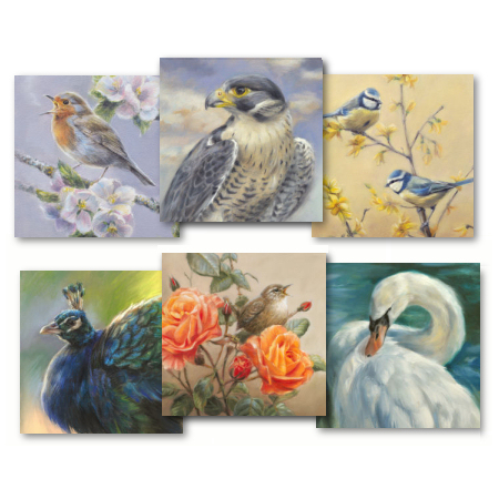 art cards of birds by wildlife artist Marjolein Kruijt