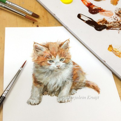 'Red maine coon kitten', painting in acrylics by Marjolein Kruijt