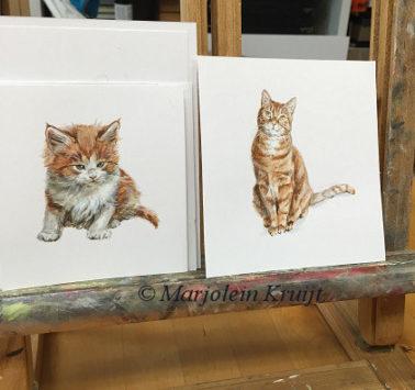 Miniatuur dierportretten in opdracht door Marjolein Kruijt