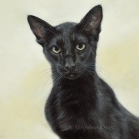 'Siamese'- cat portrait, 30x30 cm, oil painting (sold/commission)