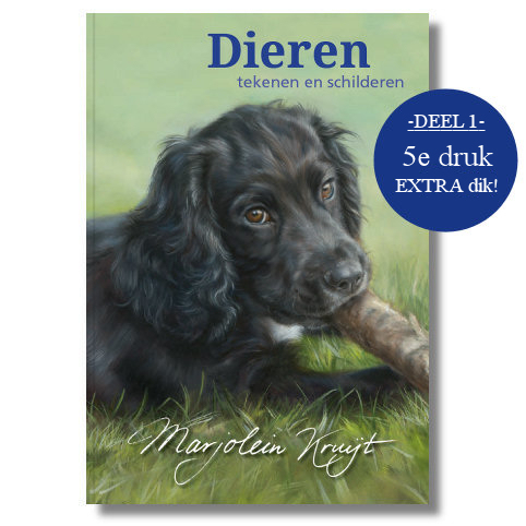 Book Dieren tekenen en schilderen PART 1-Jubilee edition 5th print
