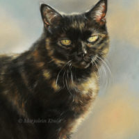 'Puck'-Tortoiseshell cat, 30x40 cm, oil painting (sold/commission)