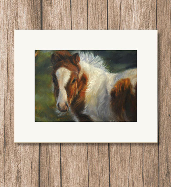 Art print reproduction Sheltlandpony- Marjolein Kruijt