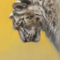 'Snowleopard, 24x20 cm, pastel $840 incl frame