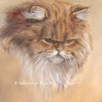 Persian cat study, oil painting, Marjolein Kruijt