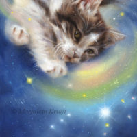 'Release' -Kitten/Orion, 30x22 cm, oil $1,900 incl frame