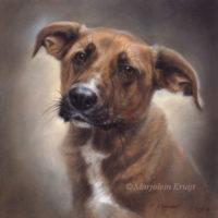 'Chavdar'-rescued dog, 30x30 cm, oil (sold/commission)