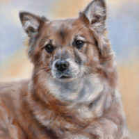 'Kathie', 40x30 cm, oil painting (sold/commission)