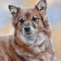 'Kathie', 40x30 cm, oil painting (sold/commission)