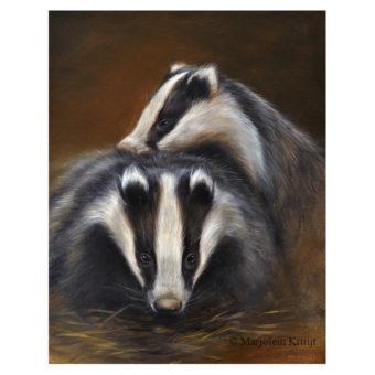 'Jonge dassen', 30x24 cm, olieverf schilderij (te koop)
