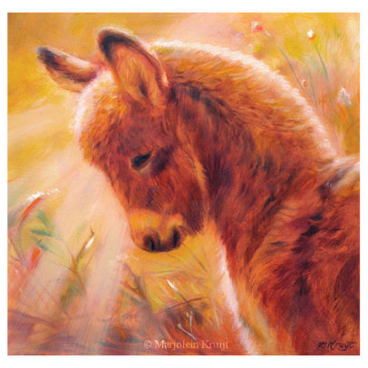 'Ezeltje', 21x21 cm, olieverf schilderij (te koop)