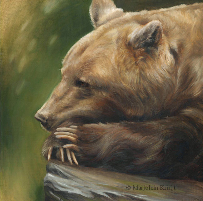'Inner thoughts', Brown bear, 80x80 cm, oil painting (for sale)