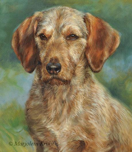 dia3-basset-fauve-de-bretagne-portret-schilderij