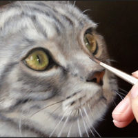 Pet portraits in commission by Marjolein Kruijt