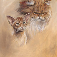 'Oriental shorthair and persian cat', 30x35 cm, oil (for sale)