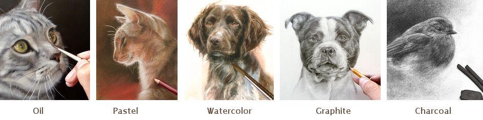 techniques for petportraits by Marjolein Kruijt